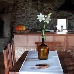 vista mesa salón